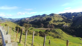 road back to Auckland from Gisborne