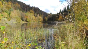 Polney Loch, Dunkeld